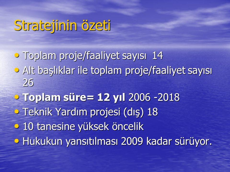 Stratejinin özeti Toplam proje/faaliyet sayısı 14 Toplam proje/faaliyet sayısı 14 Alt başlıklar ile toplam proje/faaliyet sayısı 26 Alt başlıklar ile