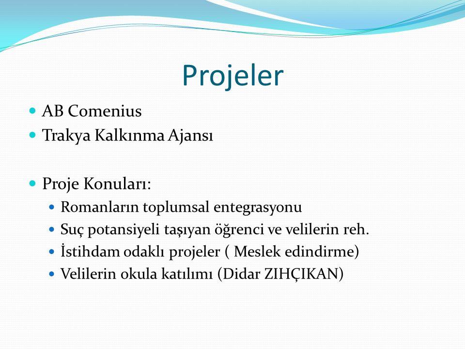 Projeler AB Comenius Trakya Kalkınma Ajansı Proje Konuları: Romanların toplumsal entegrasyonu Suç potansiyeli taşıyan öğrenci ve velilerin reh.