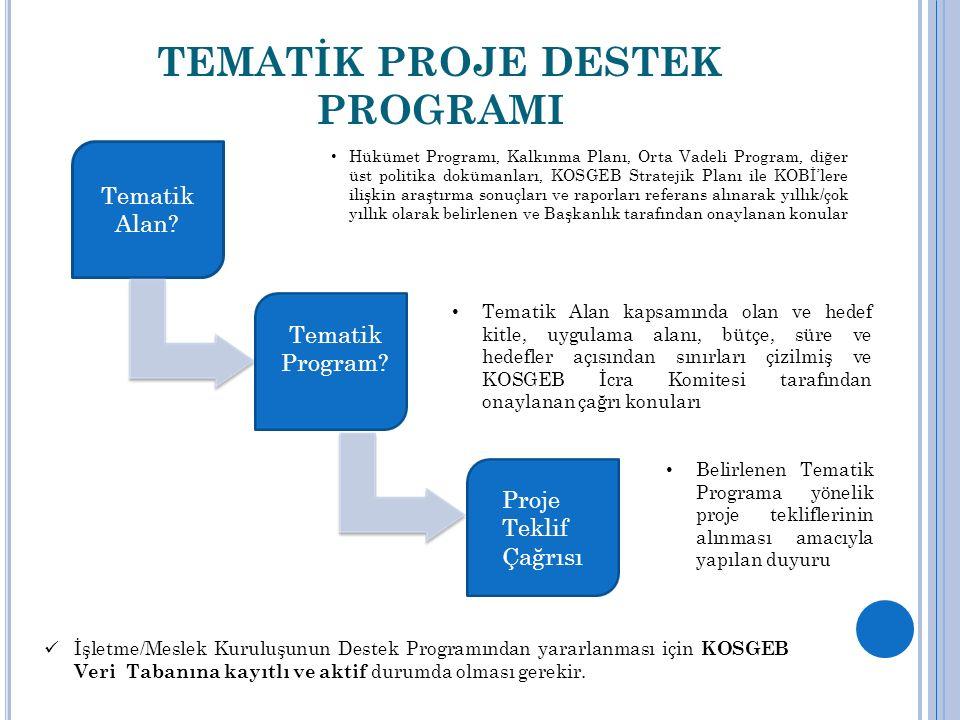 TEMATİK PROJE DESTEK PROGRAMI Tematik Alan.