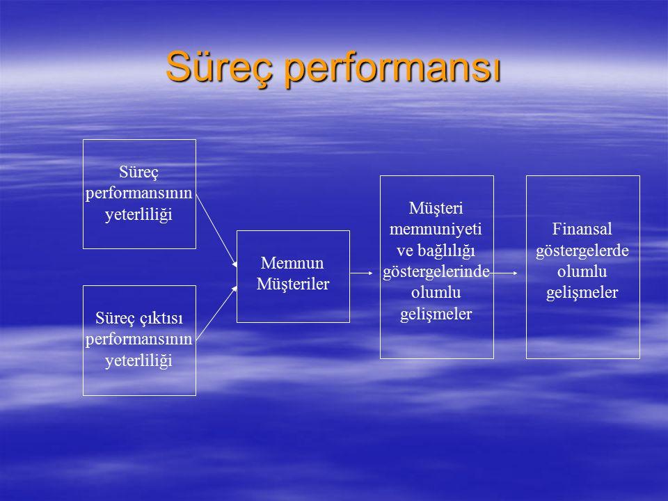 Süreç performansı  Süreç performansı, her bir kritik iş sürecinin işletilmesine ve çıktıya yönelik performansı içermektedir.