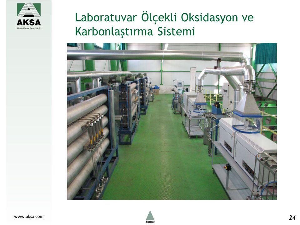 Laboratuvar Ölçekli Oksidasyon ve Karbonlaştırma Sistemi 24