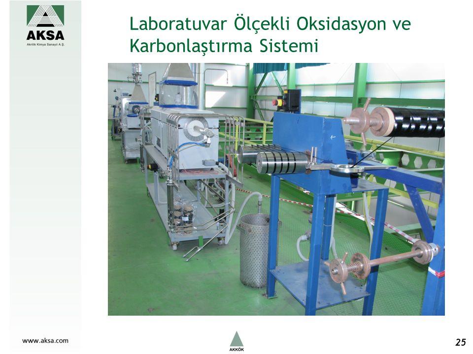 Laboratuvar Ölçekli Oksidasyon ve Karbonlaştırma Sistemi 25