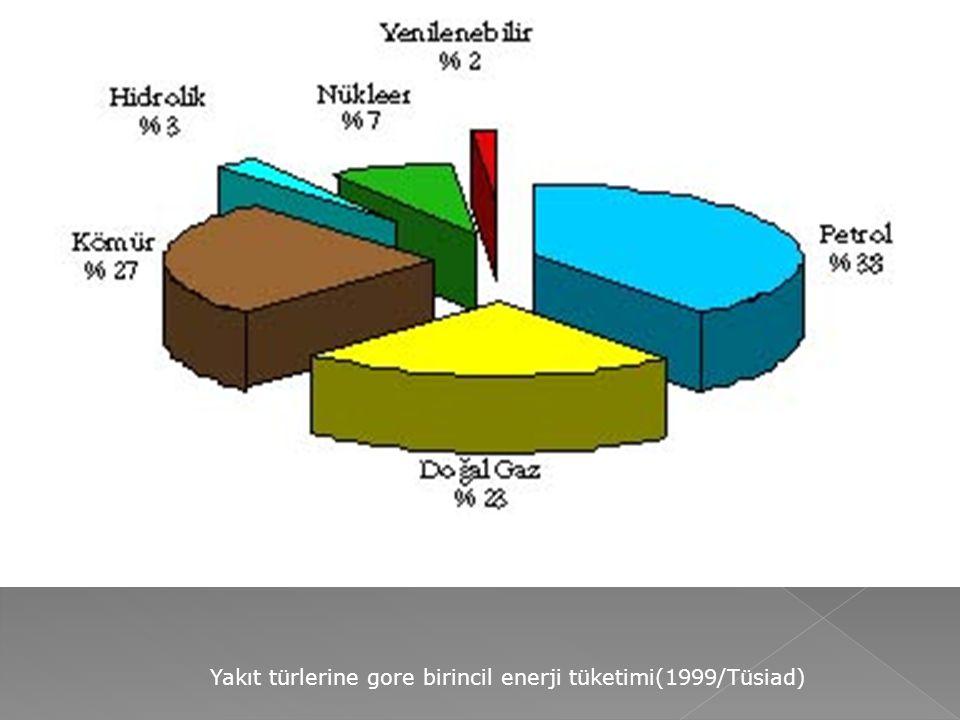 Yakıt türlerine gore birincil enerji tüketimi(1999/Tüsiad)