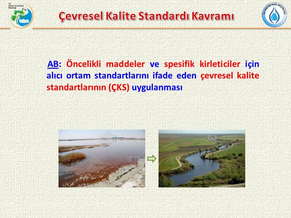 AB: Öncelikli maddeler ve spesifik kirleticiler için alıcı ortam standartlarını ifade eden çevresel kalite standartlarının (ÇKS) uygulanması