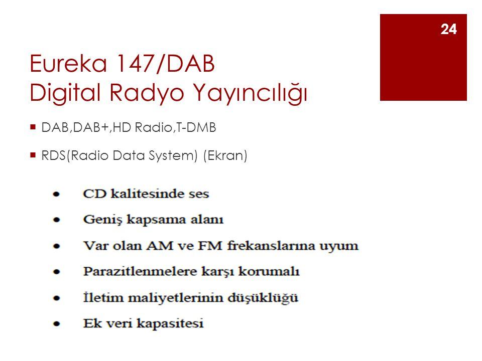 Eureka 147/DAB Digital Radyo Yayıncılığı  DAB,DAB+,HD Radio,T-DMB  RDS(Radio Data System) (Ekran) 24