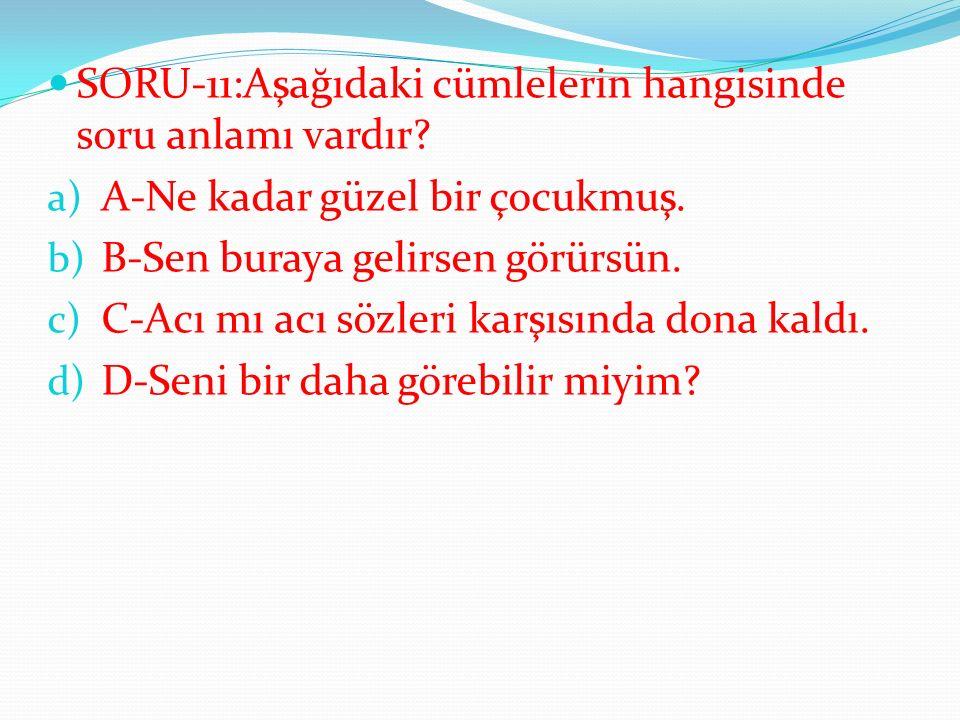 SORU-11:Aşağıdaki cümlelerin hangisinde soru anlamı vardır.