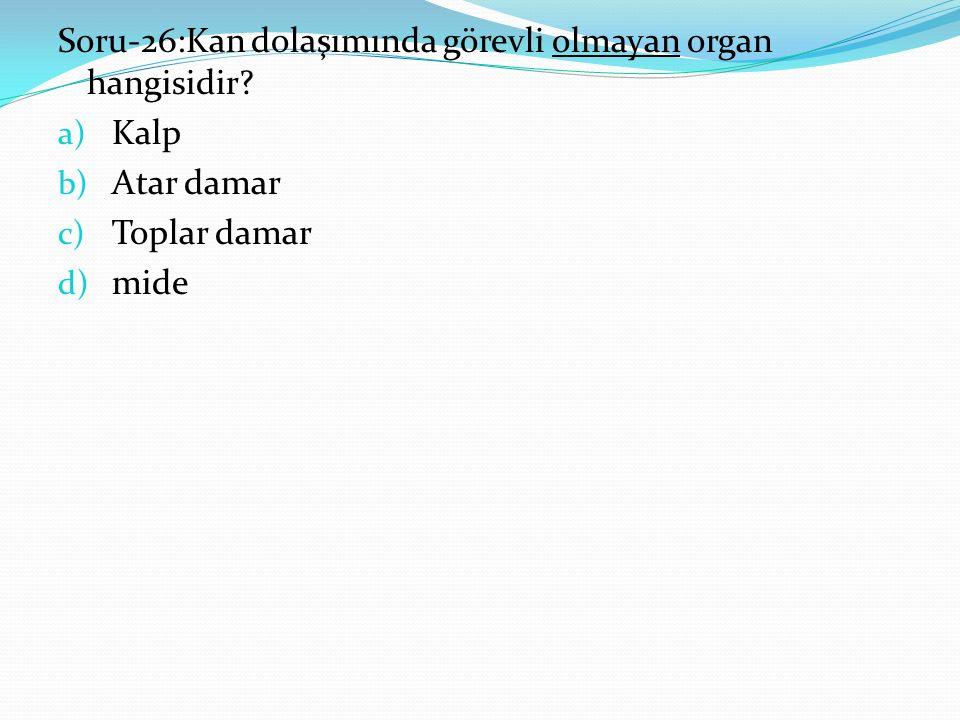 Soru-26:Kan dolaşımında görevli olmayan organ hangisidir.