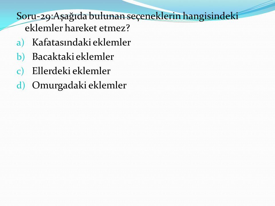 Soru-29:Aşağıda bulunan seçeneklerin hangisindeki eklemler hareket etmez.
