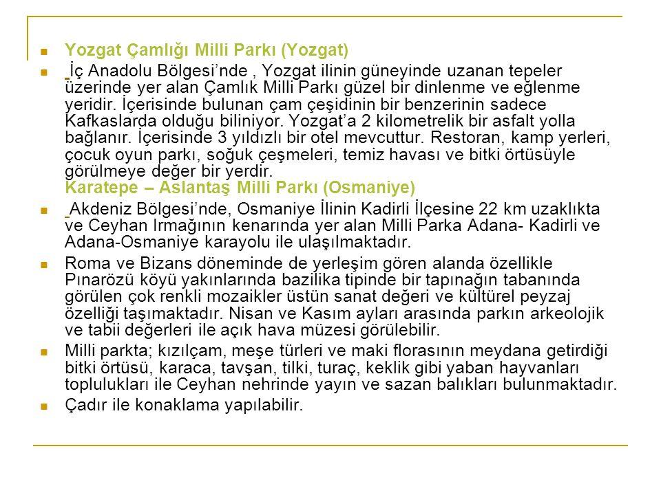Yozgat Çamlığı Milli Parkı (Yozgat) İç Anadolu Bölgesi'nde, Yozgat ilinin güneyinde uzanan tepeler üzerinde yer alan Çamlık Milli Parkı güzel bir dinl