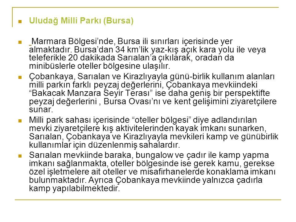 Uludağ Milli Parkı (Bursa) Marmara Bölgesi'nde, Bursa ili sınırları içerisinde yer almaktadır. Bursa'dan 34 km'lik yaz-kış açık kara yolu ile veya tel