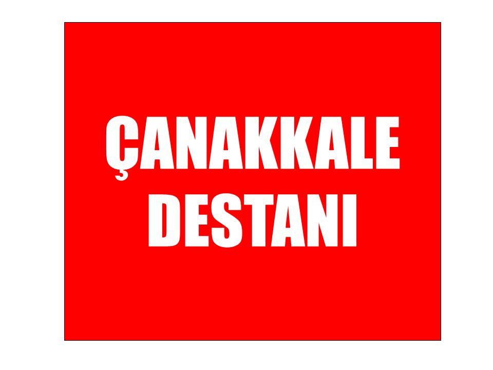 Vapurlarla İstanbulda yararlı nakli