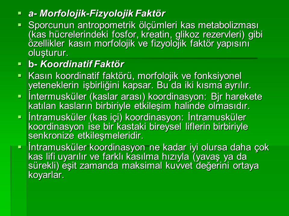 a- Morfolojik-Fizyolojik Faktör  Sporcunun antropometrik ölçümleri kas metabolizması (kas hücrelerindeki fosfor, kreatin, glikoz rezervleri) gibi ö