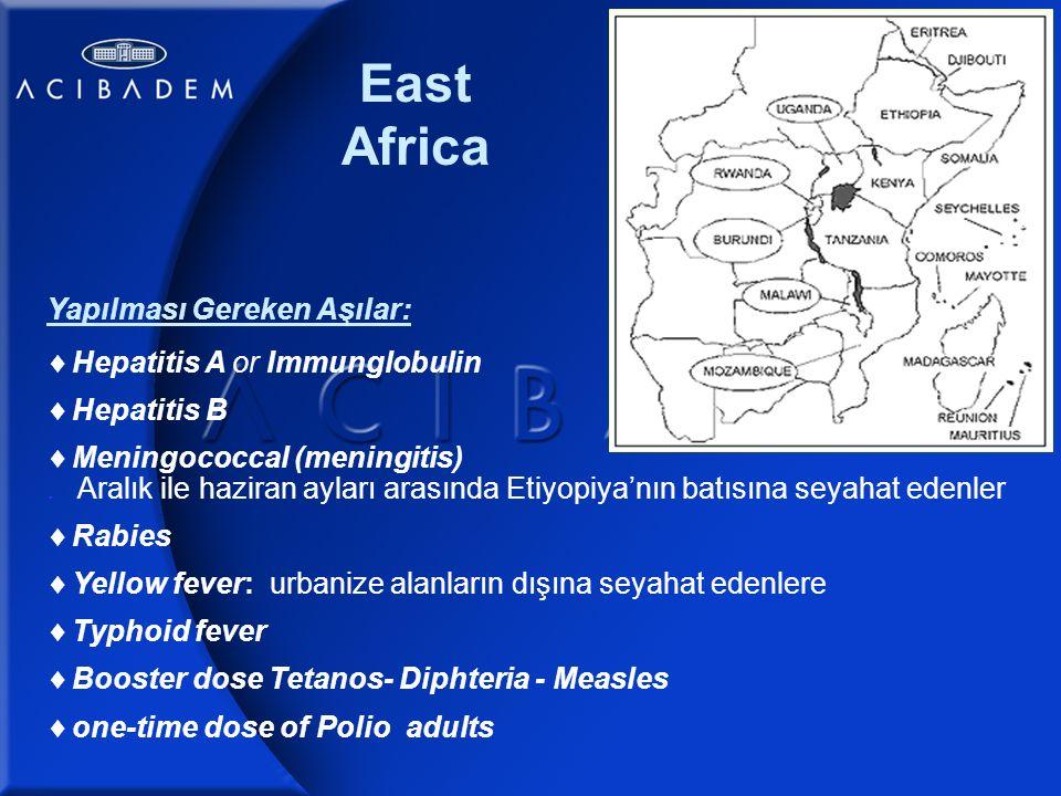 East Africa Yapılması Gereken Aşılar:  Hepatitis A or Immunglobulin  Hepatitis B  Meningococcal (meningitis).