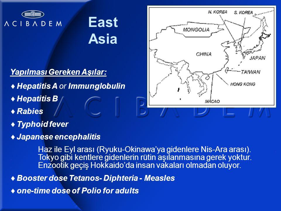 East Asia Yapılması Gereken Aşılar:  Hepatitis A or Immunglobulin  Hepatitis B  Rabies  Typhoid fever  Japanese encephalitis Haz ile Eyl arası (Ryuku-Okinawa'ya gidenlere Nis-Ara arası)...