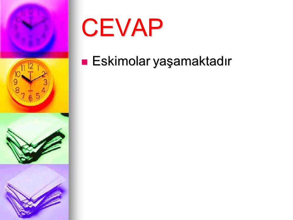 CEVAP Eskimolar yaşamaktadır Eskimolar yaşamaktadır