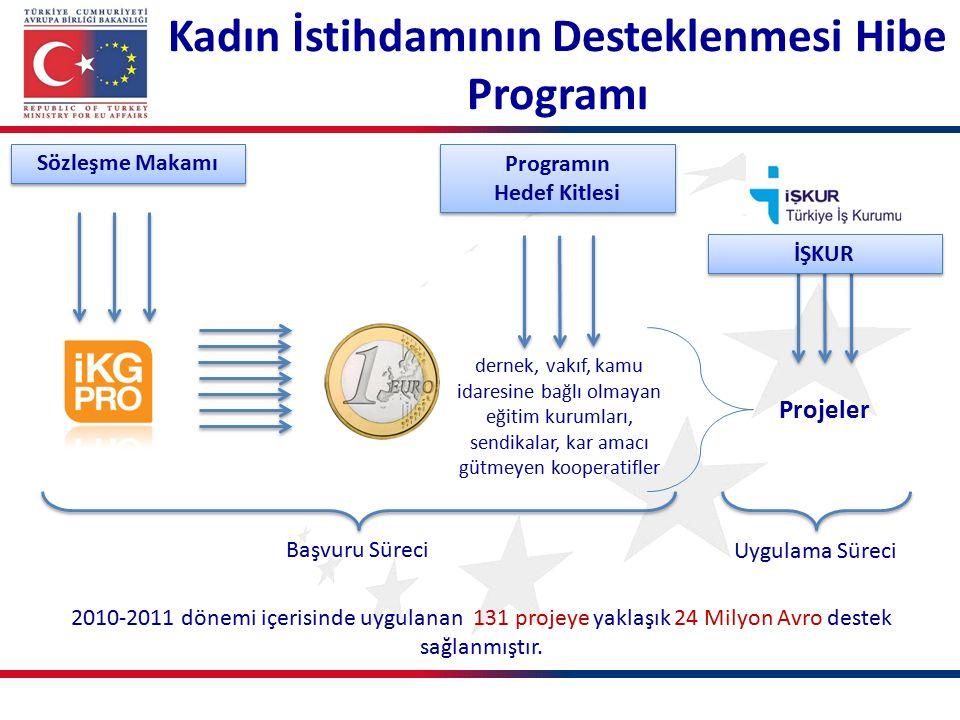 dernek, vakıf, kamu idaresine bağlı olmayan eğitim kurumları, sendikalar, kar amacı gütmeyen kooperatifler 2010-2011 dönemi içerisinde uygulanan 131 projeye yaklaşık 24 Milyon Avro destek sağlanmıştır.