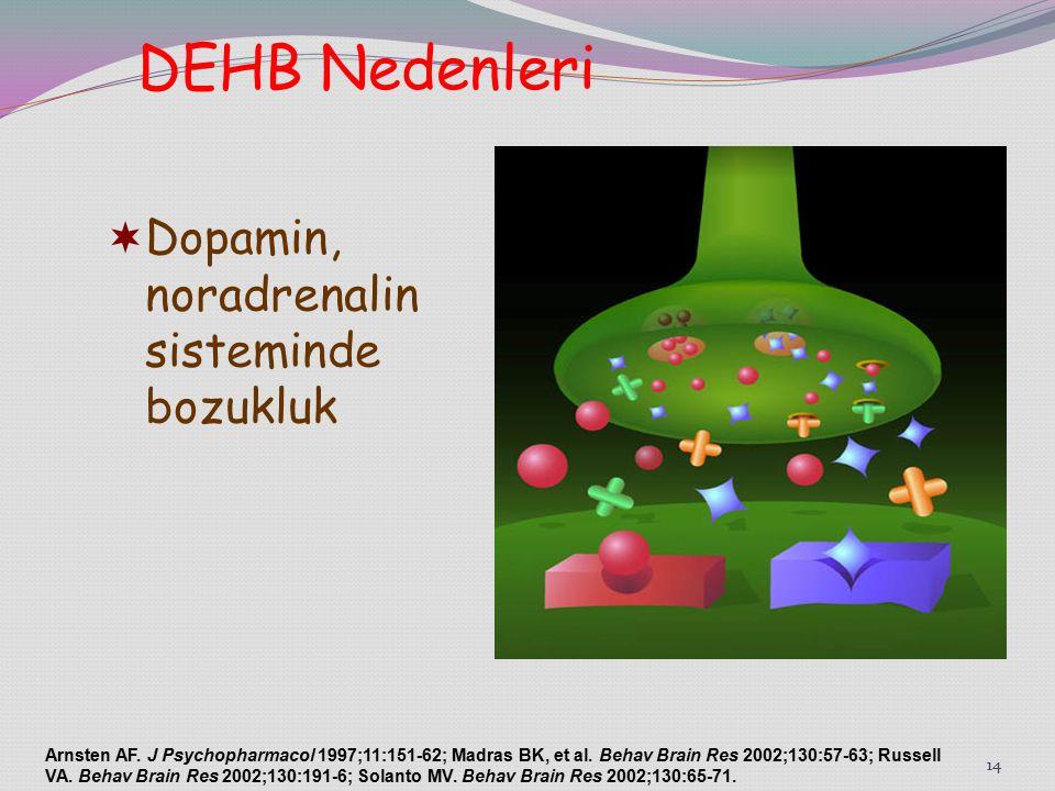 14  Dopamin, noradrenalin sisteminde bozukluk Arnsten AF.