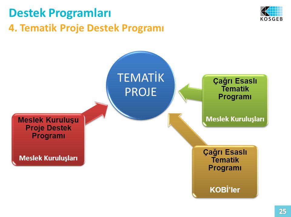 Destek Programları 4. Tematik Proje Destek Programı TEMATİK PROJE Meslek Kuruluşu Proje Destek Programı Meslek Kuruluşları Çağrı Esaslı Tematik Progra
