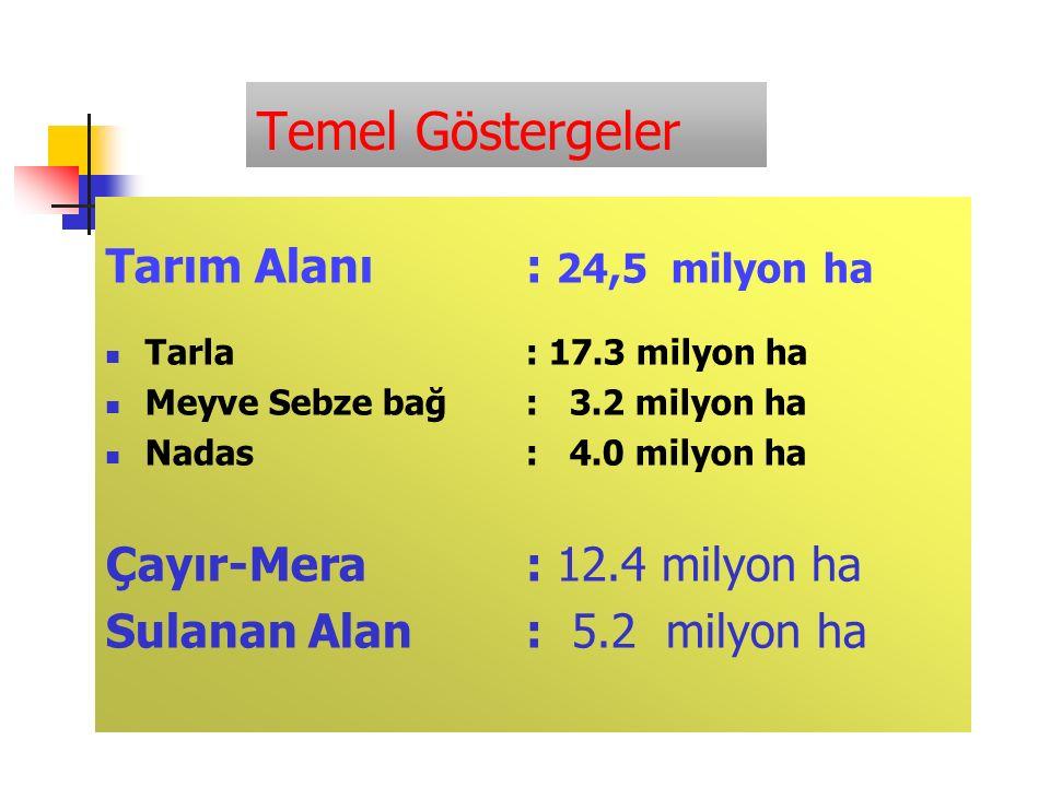 Temel Göstergeler Tarım Alanı: 24,5 milyon ha Tarla: 17.3 milyon ha Meyve Sebze bağ: 3.2 milyon ha Nadas: 4.0 milyon ha Çayır-Mera: 12.4 milyon ha Sulanan Alan: 5.2 milyon ha