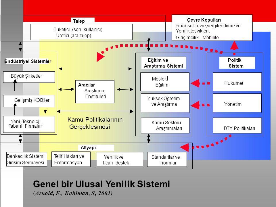 Genel bir Ulusal Yenilik Sistemi ( Arnold, E., Kuhlman, S, 2001) Kamu Politikalarının Gerçekleşmesi