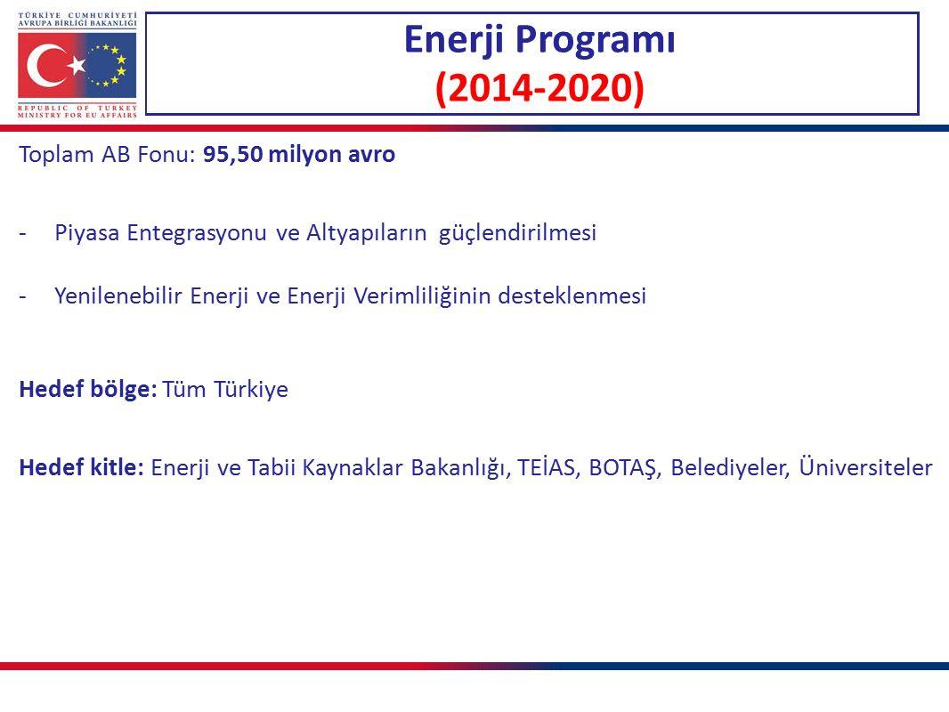 Enerji Programı (2014-2020) Toplam AB Fonu: 95,50 milyon avro -Piyasa Entegrasyonu ve Altyapıların güçlendirilmesi -Yenilenebilir Enerji ve Enerji Verimliliğinin desteklenmesi Hedef bölge: Tüm Türkiye Hedef kitle: Enerji ve Tabii Kaynaklar Bakanlığı, TEİAS, BOTAŞ, Belediyeler, Üniversiteler