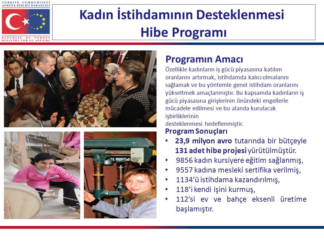 Kadın İstihdamının Desteklenmesi Hibe Programı Program Sonuçları 23,9 milyon avro tutarında bir bütçeyle 131 adet hibe projesi yürütülmüştür. 9856 kad