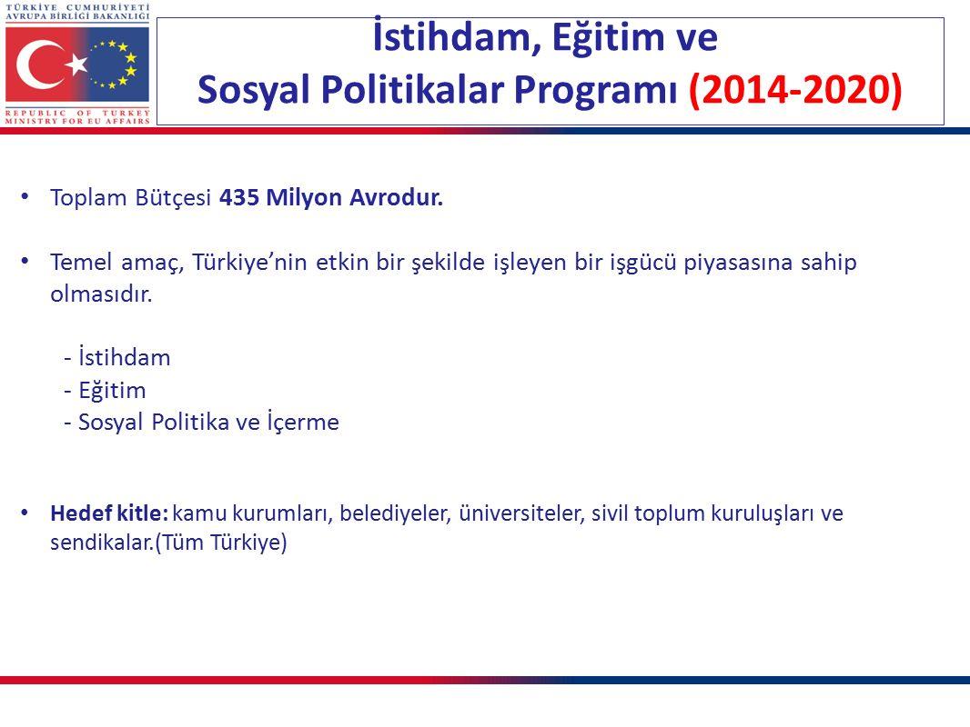Toplam Bütçesi 435 Milyon Avrodur. Temel amaç, Türkiye'nin etkin bir şekilde işleyen bir işgücü piyasasına sahip olmasıdır. - İstihdam - Eğitim - Sosy