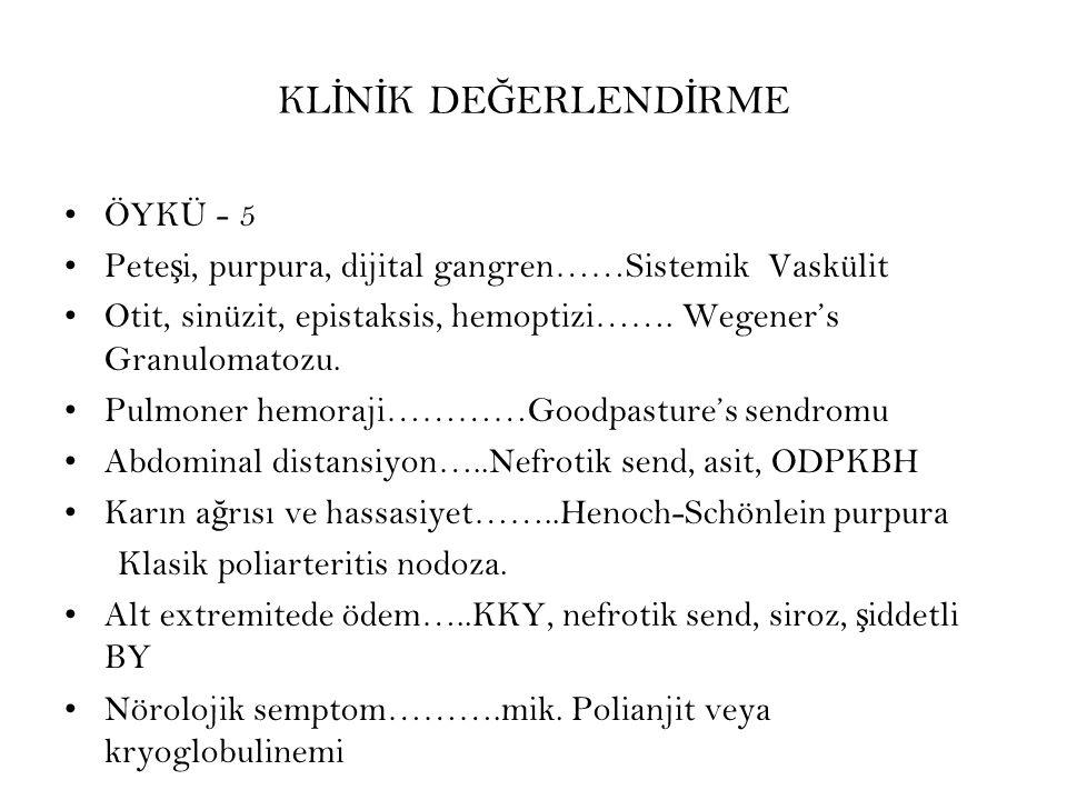 KL İ N İ K DE Ğ ERLEND İ RME ÖYKÜ - 5 Pete ş i, purpura, dijital gangren……Sistemik Vaskülit Otit, sinüzit, epistaksis, hemoptizi……. Wegener's Granulom