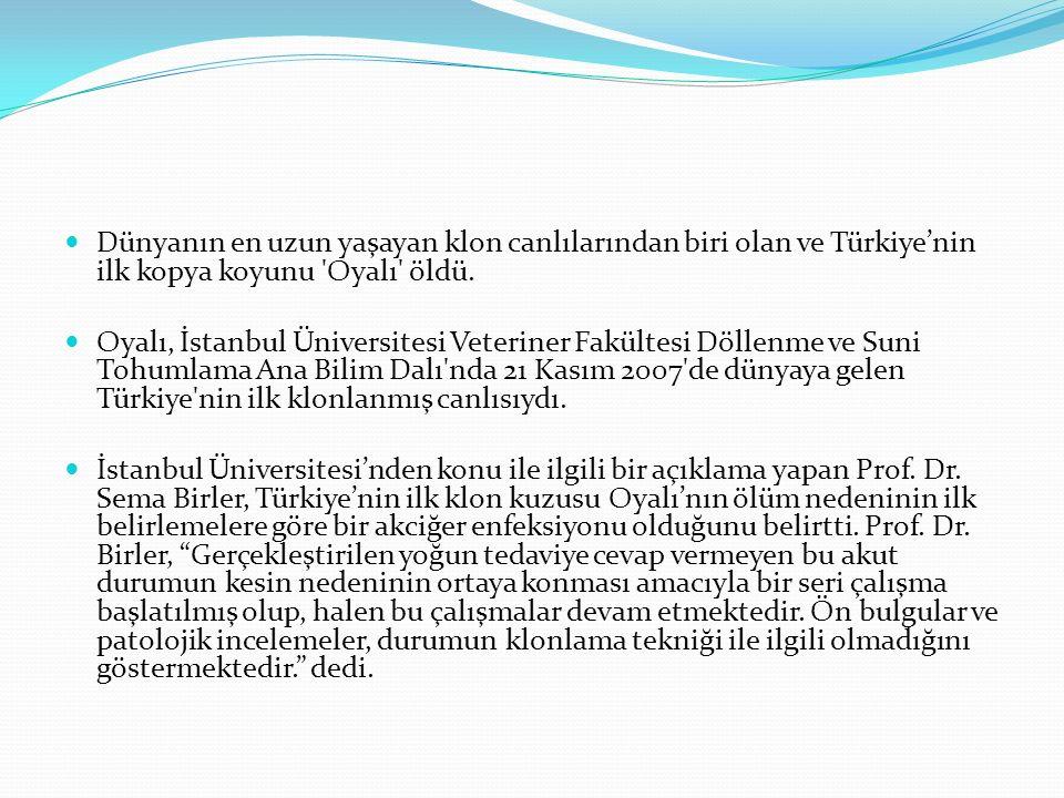 Dünyanın en uzun yaşayan klon canlılarından biri olan ve Türkiye'nin ilk kopya koyunu 'Oyalı' öldü. Oyalı, İstanbul Üniversitesi Veteriner Fakültesi D