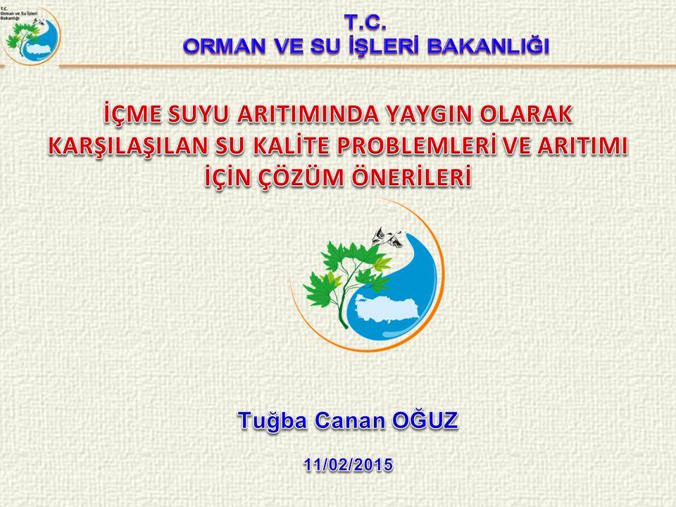 İçme Suyu Kalitesine Genel Bakış Mevcut İçme Suyu Parametrelerinin Değerlendirilmesi Türkiye'ye Özgü Kirleticilerin İçme Suyu Standartları Açısından Değerlendirilmesi Türkiye'ye Özgü Bitki Koruma Ürünlerinin İçme Suyu Standartları Açısından Değerlendirilmesi Belediyelere İlişkin Değerlendirmeler