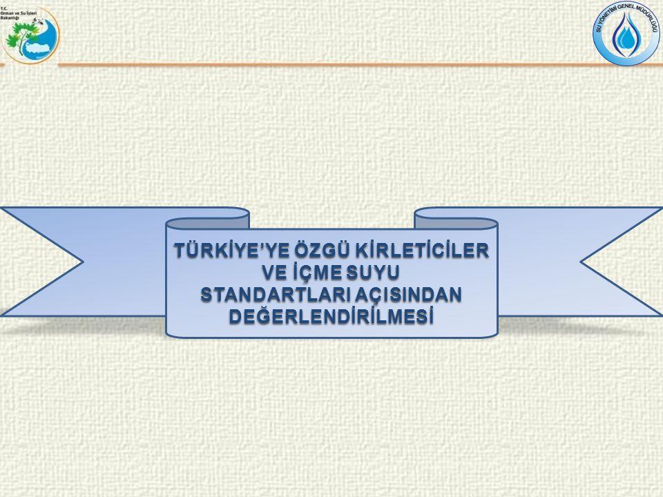 TÜRKİYE'YE ÖZGÜ KİRLETİCİLER VE İÇME SUYU STANDARTLARI AÇISINDAN DEĞERLENDİRİLMESİ