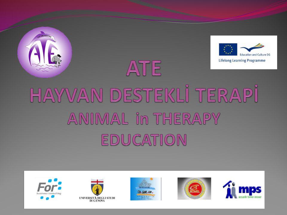 Yetişkin eğiliminde yenilikçi öğrenme metodları geliştirerek bu yöntemleri Avrupa düzeyinde yaymak.