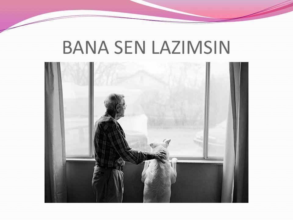 BANA SEN LAZIMSIN