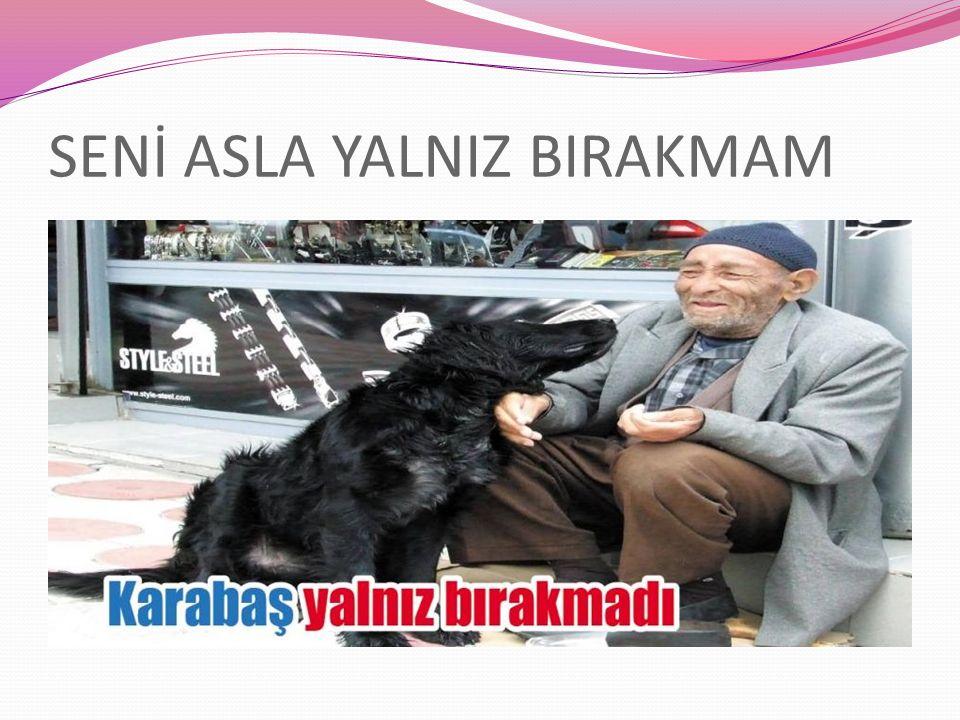 SENİ ASLA YALNIZ BIRAKMAM