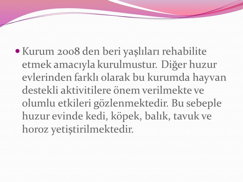Kurum 2008 den beri yaşlıları rehabilite etmek amacıyla kurulmustur.