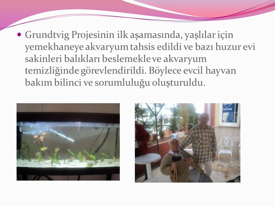 Grundtvig Projesinin ilk aşamasında, yaşlılar için yemekhaneye akvaryum tahsis edildi ve bazı huzur evi sakinleri balıkları beslemekle ve akvaryum temizliğinde görevlendirildi.