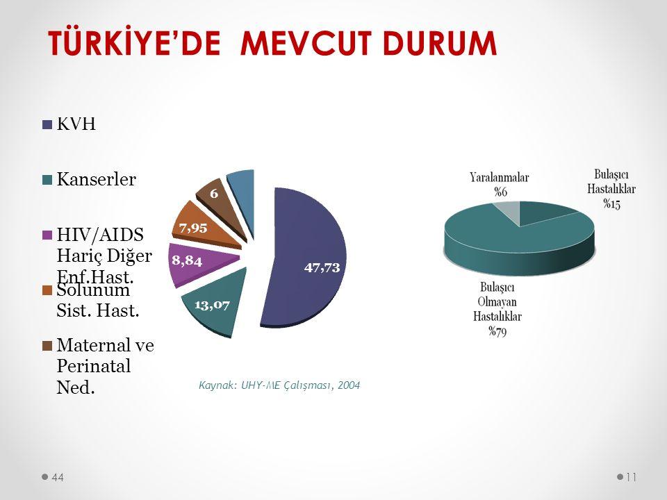 TÜRKİYE'DE MEVCUT DURUM 4411
