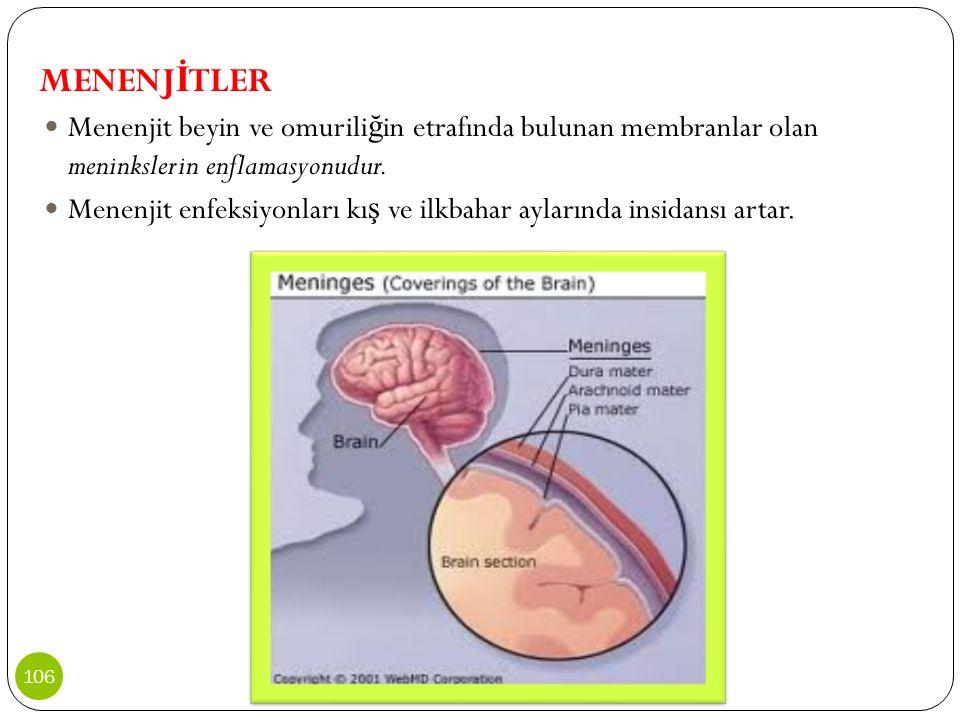 MENENJ İ TLER Menenjit beyin ve omurili ğ in etrafında bulunan membranlar olan meninkslerin enflamasyonudur. Menenjit enfeksiyonları kı ş ve ilkbahar