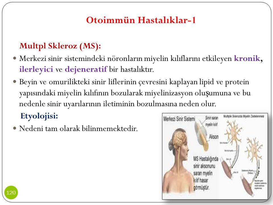 Otoimmün Hastalıklar-1 Multpl Skleroz (MS): Merkezi sinir sistemindeki nöronların miyelin kılıflarını etkileyen kronik, ilerleyici ve dejeneratif bir