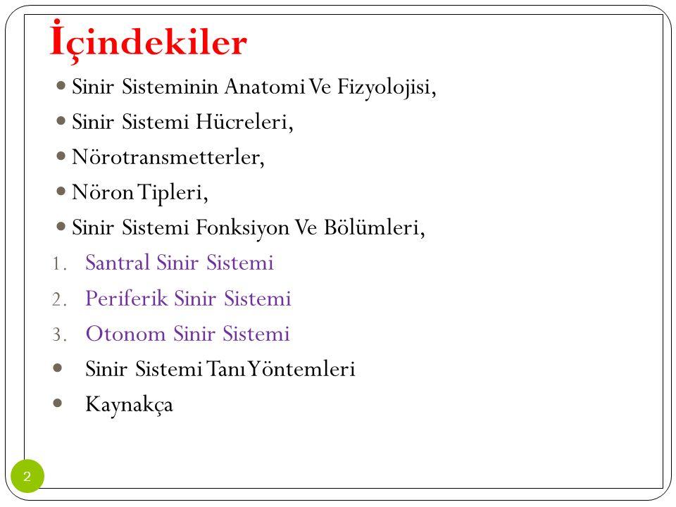 İ ntramedüller Tümörler Astrositomalar: En yaygın bulgu a ğ rıdır.
