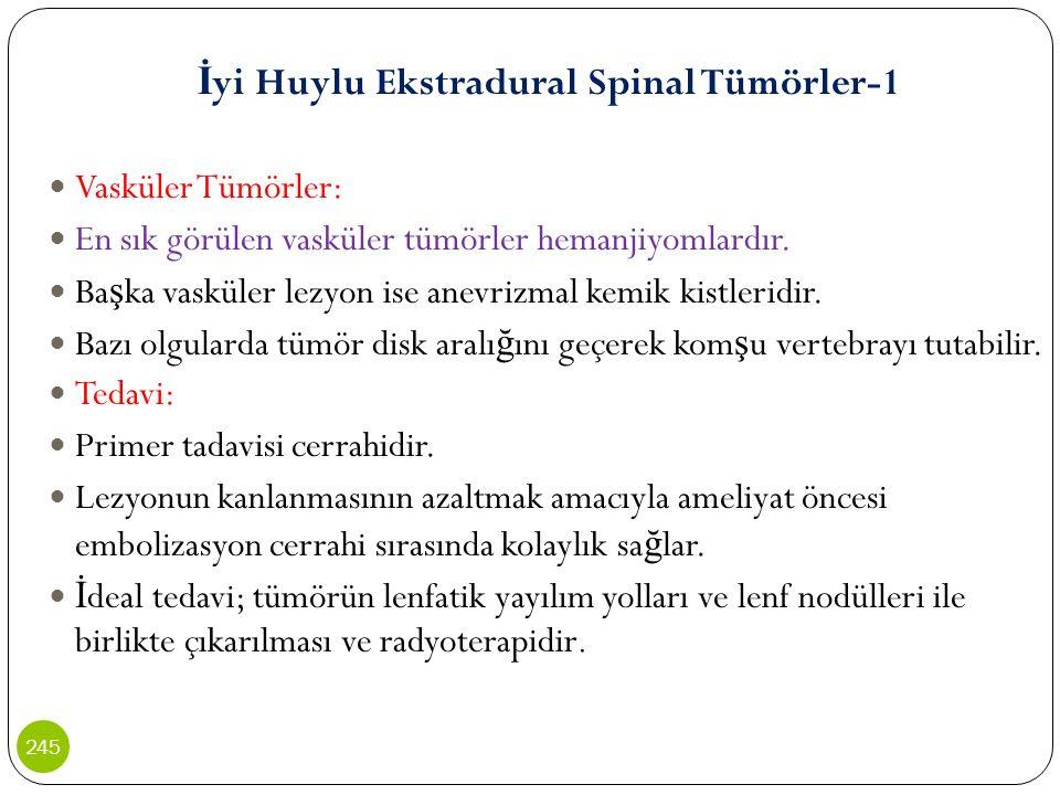 İ yi Huylu Ekstradural Spinal Tümörler-1 Vasküler Tümörler: En sık görülen vasküler tümörler hemanjiyomlardır. Ba ş ka vasküler lezyon ise anevrizmal