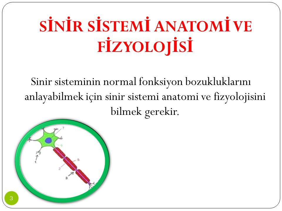 S İ N İ R S İ STEM İ ANATOM İ VE F İ ZYOLOJ İ S İ Sinir sisteminin normal fonksiyon bozukluklarını anlayabilmek için sinir sistemi anatomi ve fizyoloj