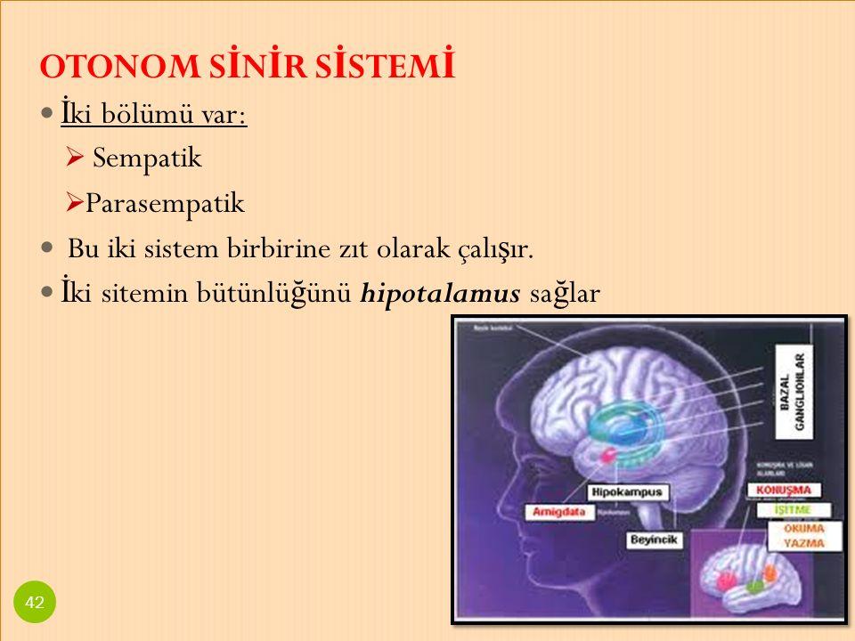 OTONOM S İ N İ R S İ STEM İ İ ki bölümü var:  Sempatik  Parasempatik Bu iki sistem birbirine zıt olarak çalı ş ır. İ ki sitemin bütünlü ğ ünü hipota