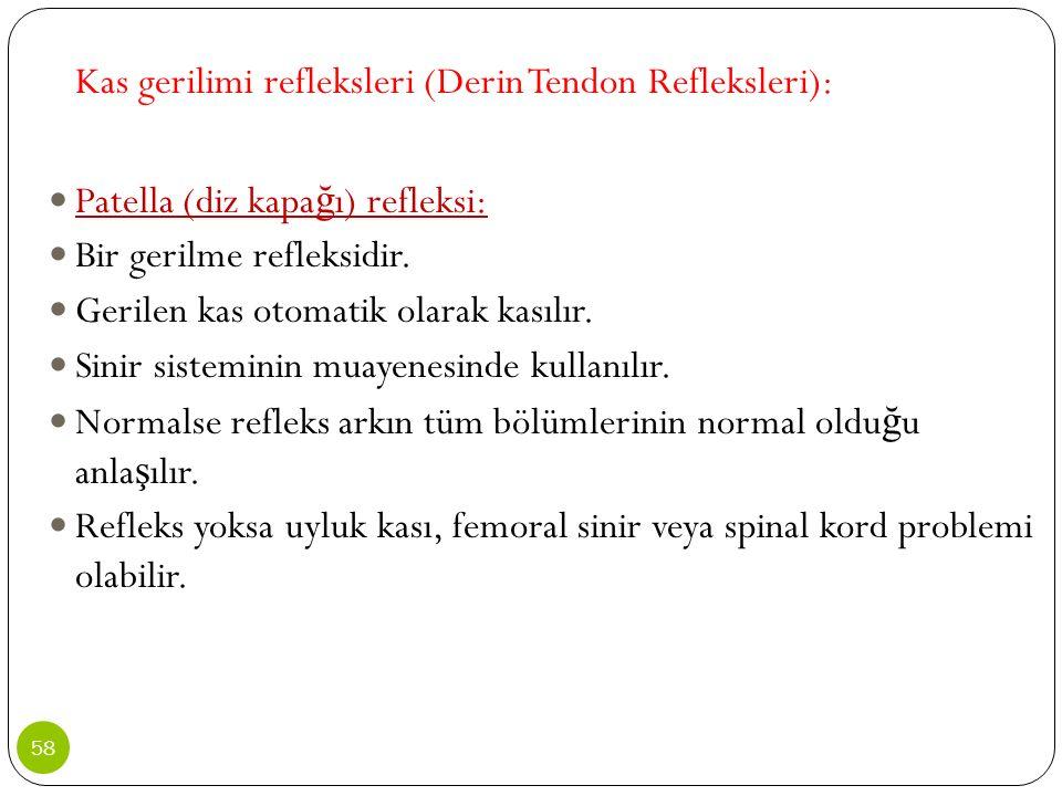 Kas gerilimi refleksleri (Derin Tendon Refleksleri): Patella (diz kapa ğ ı) refleksi: Bir gerilme refleksidir. Gerilen kas otomatik olarak kasılır. Si