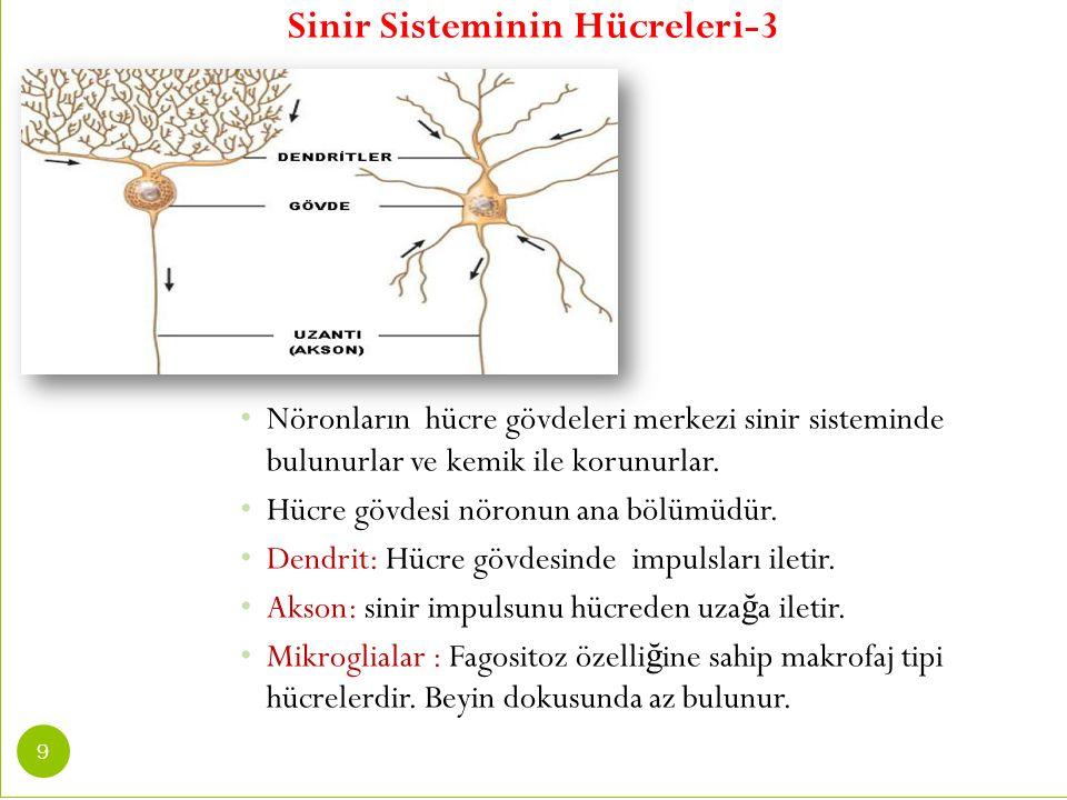 S İ N İ R S İ STEM İ N İ N TANILANMASI-1 2.