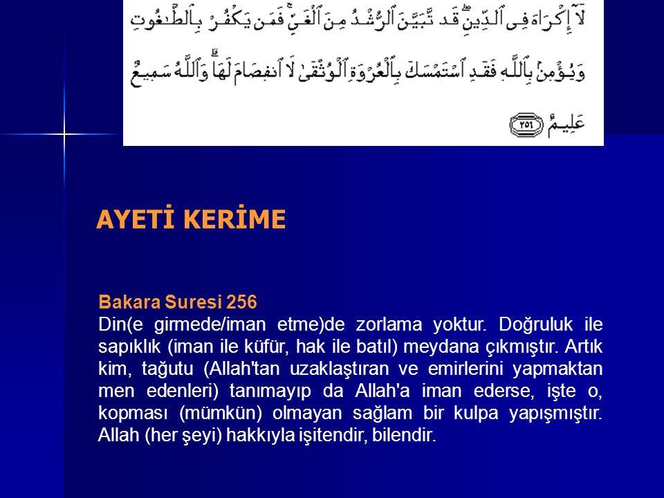 Bakara Suresi 256 Din(e girmede/iman etme)de zorlama yoktur.