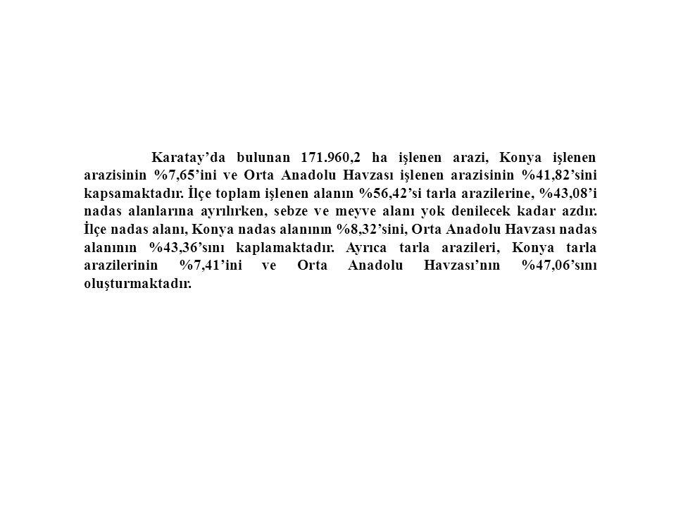 Karatay'da bulunan 171.960,2 ha işlenen arazi, Konya işlenen arazisinin %7,65'ini ve Orta Anadolu Havzası işlenen arazisinin %41,82'sini kapsamaktadır.