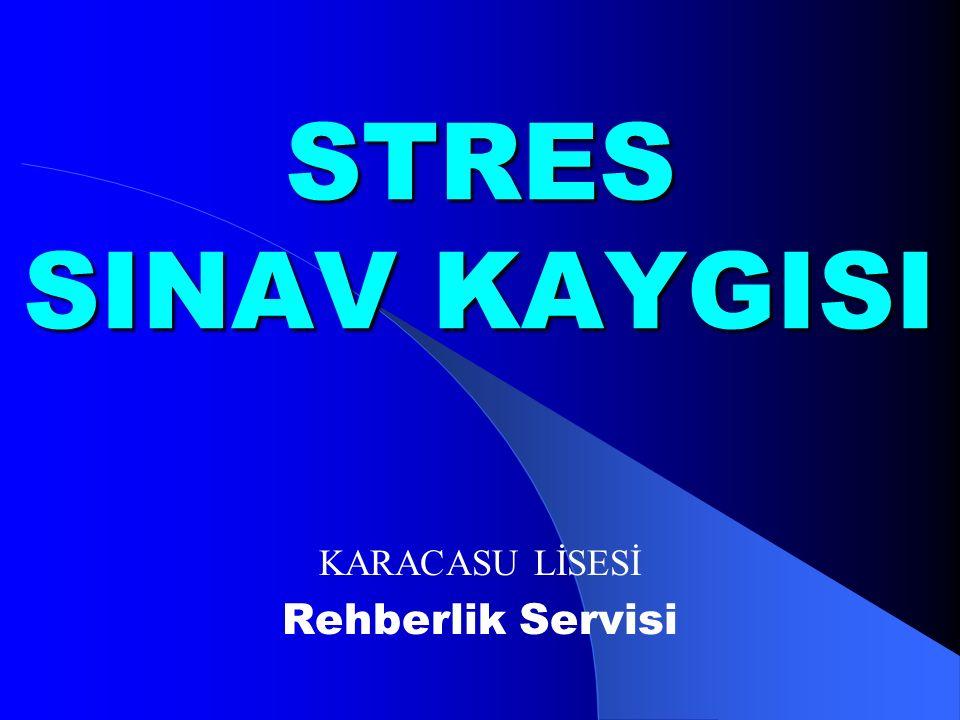 STRES SINAV KAYGISI KARACASU LİSESİ Rehberlik Servisi