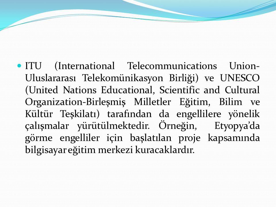 ITU (International Telecommunications Union- Uluslararası Telekomünikasyon Birliği) ve UNESCO (United Nations Educational, Scientific and Cultural Organization-Birleşmiş Milletler Eğitim, Bilim ve Kültür Teşkilatı) tarafından da engellilere yönelik çalışmalar yürütülmektedir.