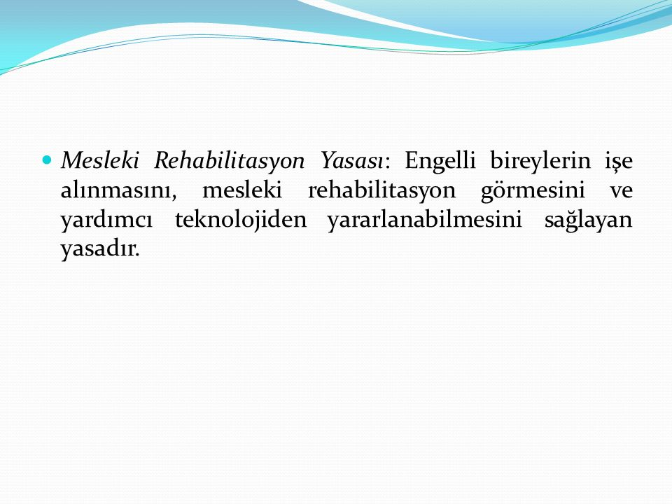 Mesleki Rehabilitasyon Yasası: Engelli bireylerin işe alınmasını, mesleki rehabilitasyon görmesini ve yardımcı teknolojiden yararlanabilmesini sağlayan yasadır.